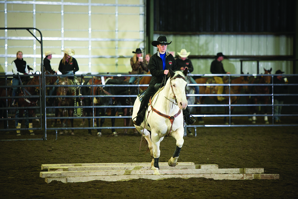CSC Horse Show & Rodeo